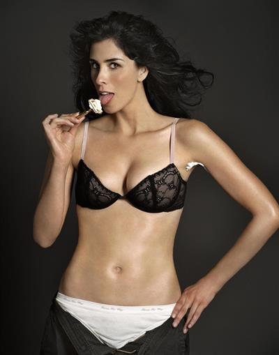 Sarah Silverman in lingerie
