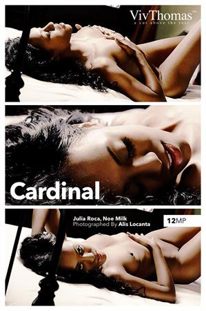 Julia Roca, Noe Milk: Cardinal by Alis Locanta