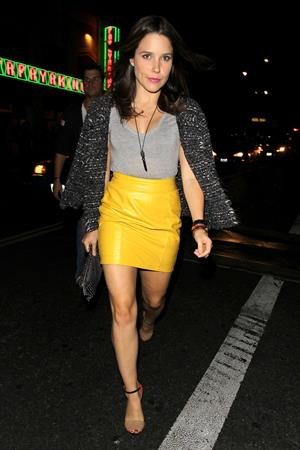Sophia Bush Leaving the Sayer's club in Hollywood - November 3, 2012