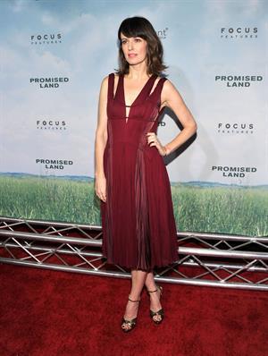 Rosemarie DeWitt  Promised Land  New York Premiere, Dec 4, 2012